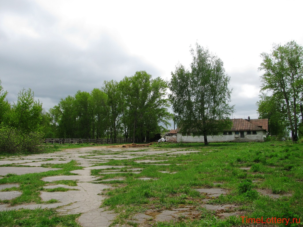 конюшни нижегородского ипподрома