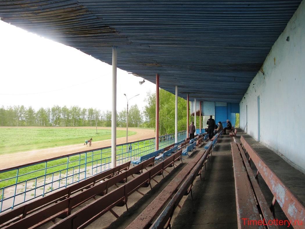 посетители нижегородского ипподрома