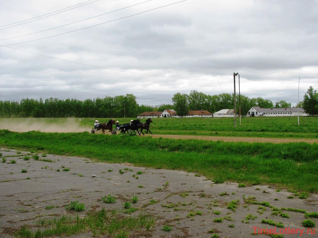бега на нижегородском ипподроме