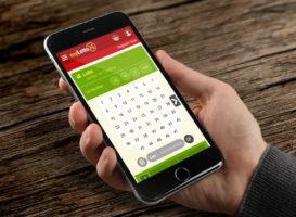 Операторы онлайн-беттинга надеются избежать запрета в Ирландии