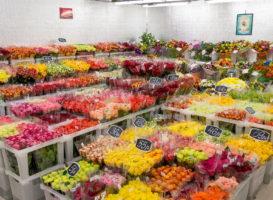 Букет цветов и лотерейный билет в придачу