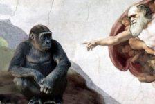 Теория вероятностей, эволюция и «Поле чудес»