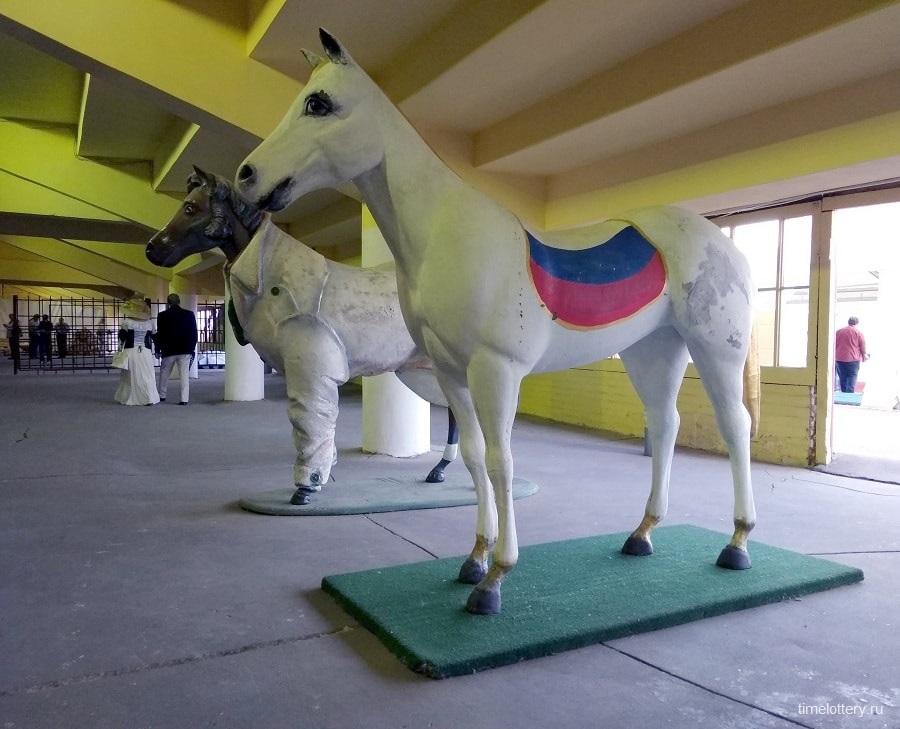 Конь обычный и в пальто