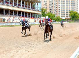 Московский ипподром, итоги бегового дня (28 июня)