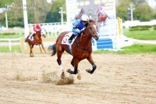 Дубль конного завода «Донской» и два Всероссийских рекорда