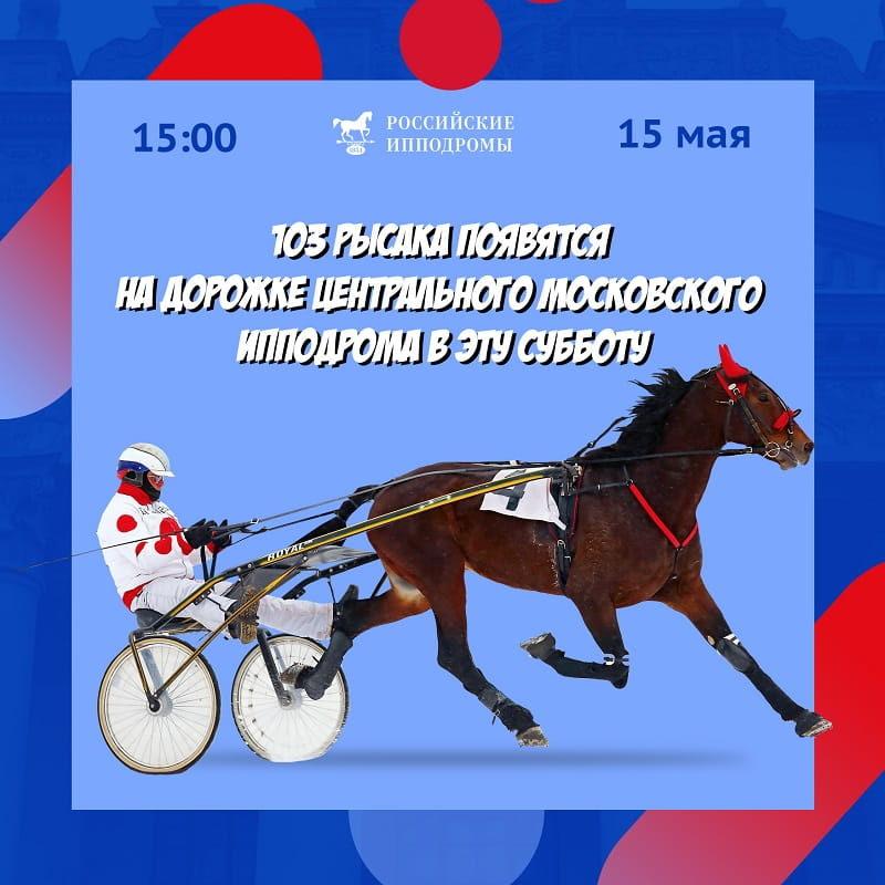 Центральный Московский ипподром, анонс бегового дня (15/05)